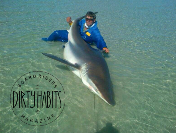 shark caught in Langebaan Lagoon, Shark bay Kiteboarding spot
